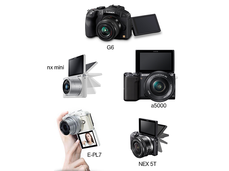 Mirrorless Cameras with Articulating or Flip-Up Screens