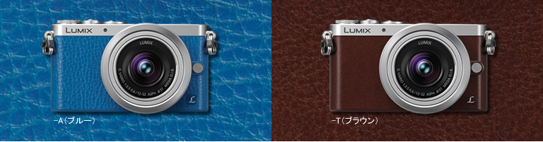 Brown and Blue Panasonic GM1