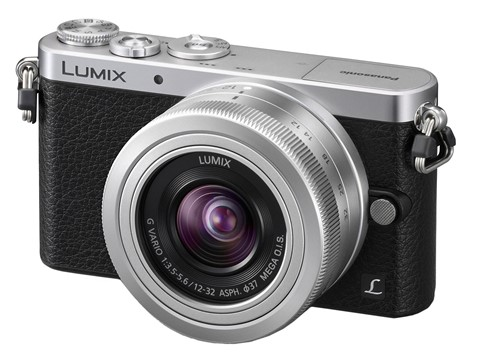 Panasonic GM1 with the 12-32mm