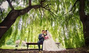 wedding-bench